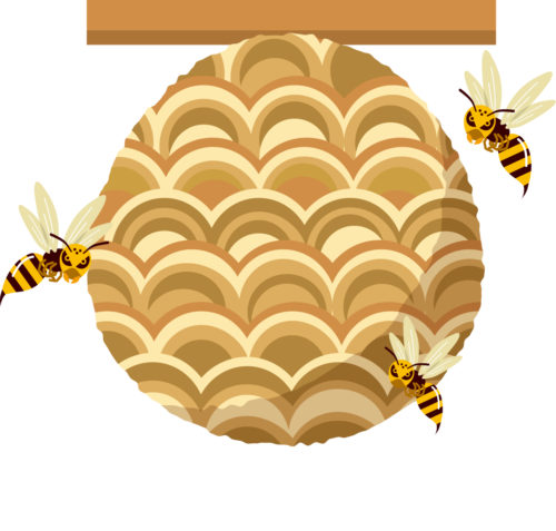 スズメバチの巣の画像