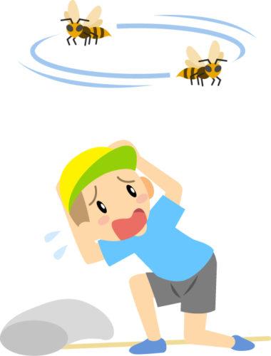 スズメバチを怖がる子供の画像