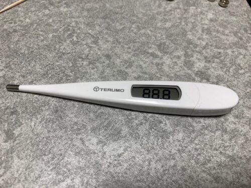 テルモの電子体温計C230